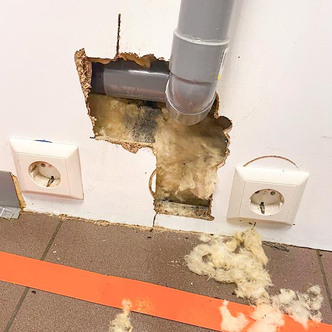 Traas Building Care knaagschade isolatie materiaal